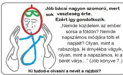 job_71-4.6-7m.jpg