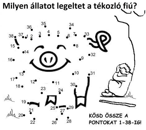 lk_1515_diszno.jpg