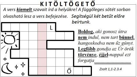 zsolt_11-2_kitoltes.jpg