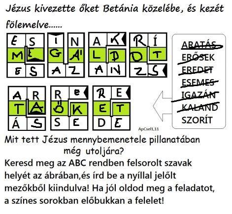 szokukac_apcsel111m.jpg
